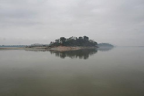 Павлин остров