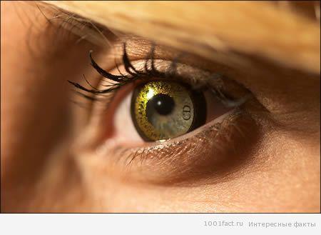 Необычные контактные линзы