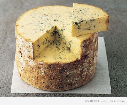 Історія сиру з пліснявою