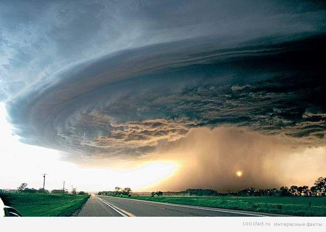 аллея торнадо