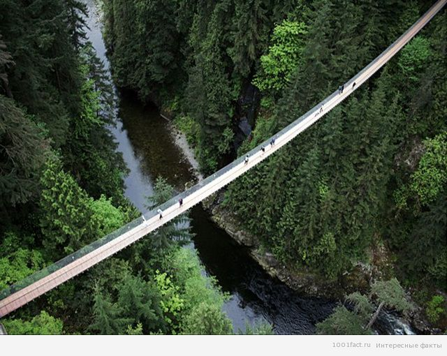 висячий мост Капилано в Канаде