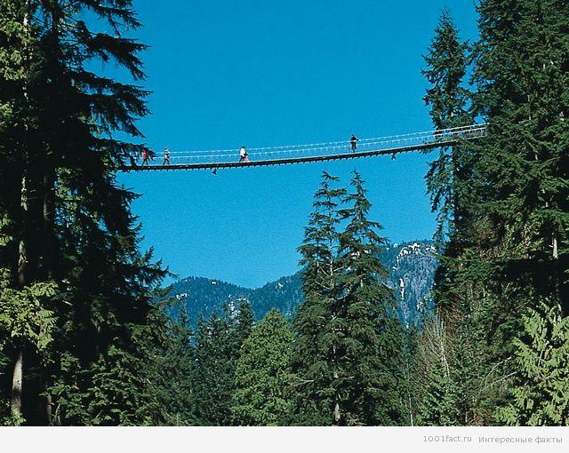 Канада_мост Капилано