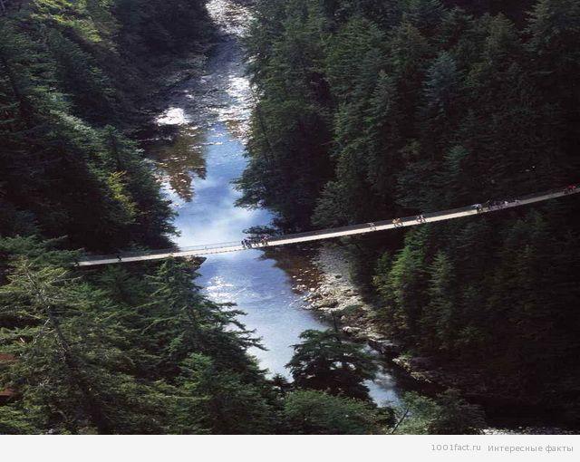 канадский мост Капилано