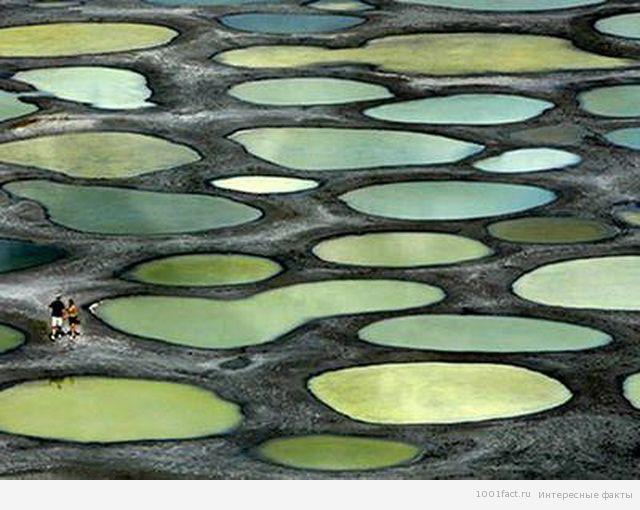 пятнистое озеро Клилук_факты