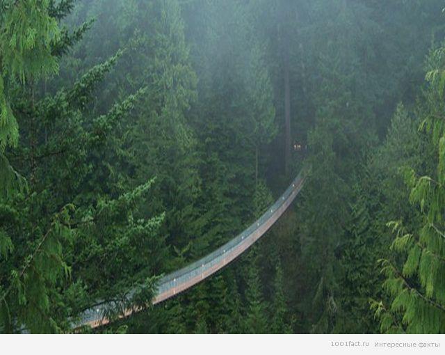 о мосте Капилано