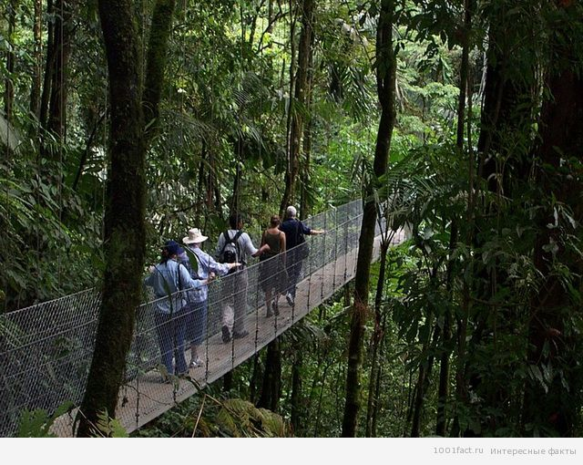 туристы на мосту Капилано