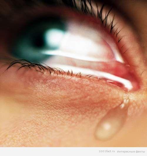 женские слезы