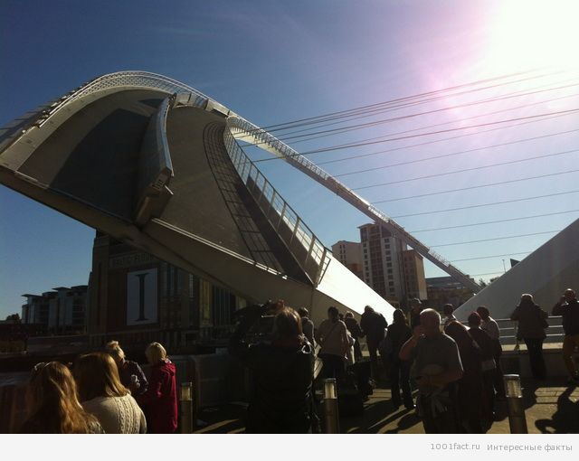 немного фактов о мосте Миллениум