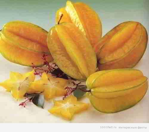 экзотические фрукты_карамбола