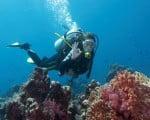факты о подводных погружениях