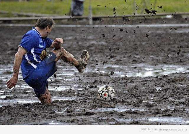 вид футбола_болотный
