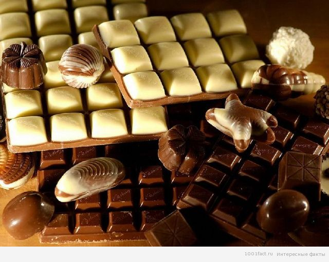 шоколадные факты