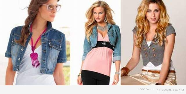 "женские модели курток ""фигаро"""
