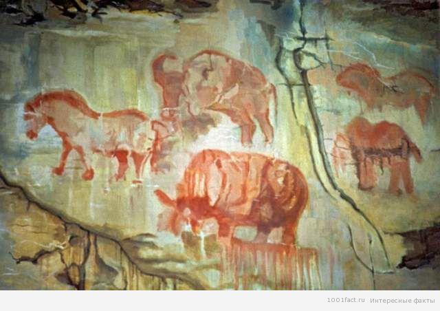 рисунки на стенах Каповой пещеры