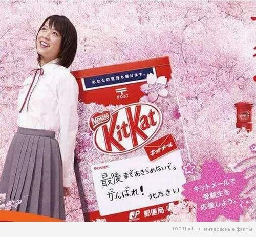 kit kat_ талисман Японии