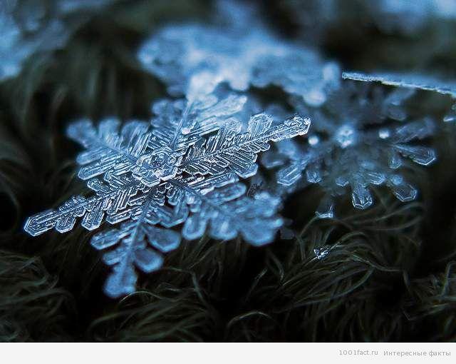 о снеге