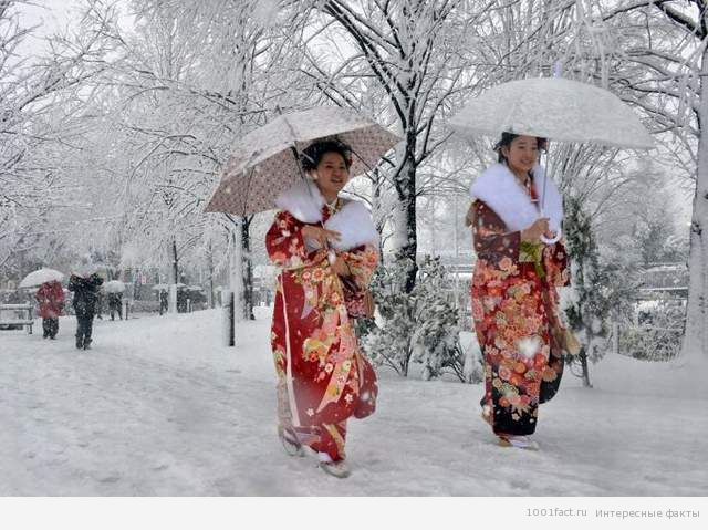 японский снег