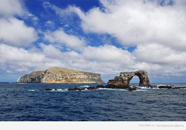 остров Дарвин