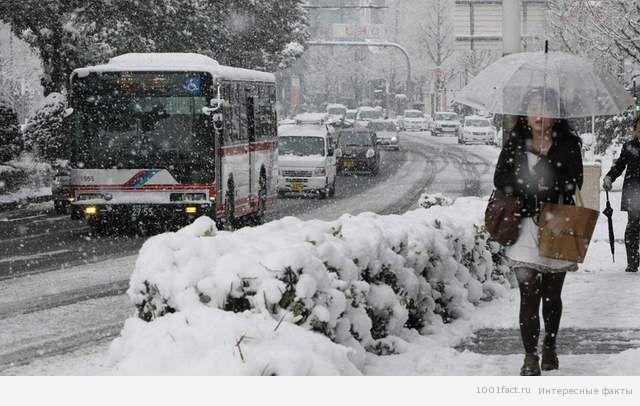 Япония в снегу