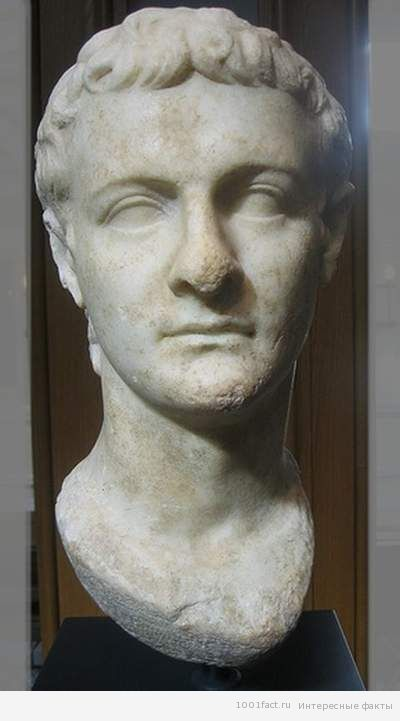 Калигула