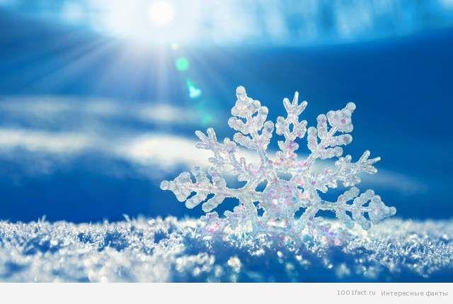 белизна снежинок
