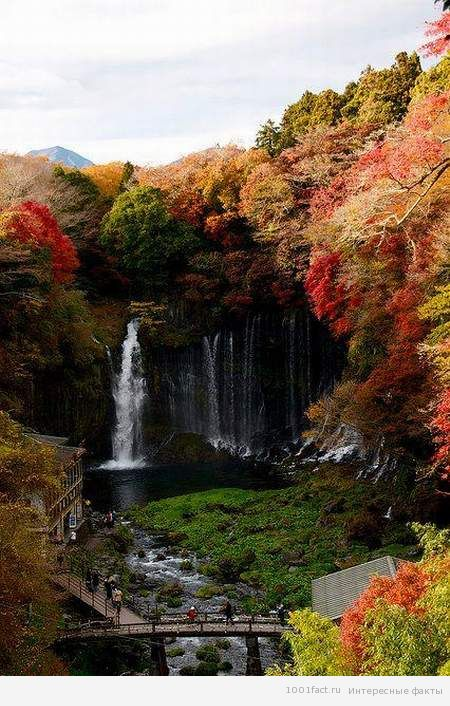 водопад осенью_Шираито