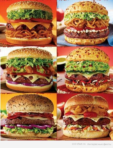 разнообразие гамбургеров