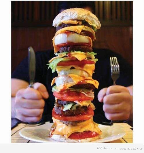 эксперимент_поедание гамбургеров