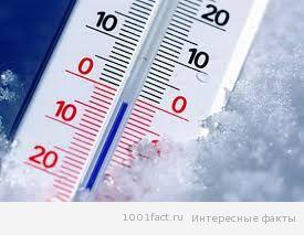 факты_термометр