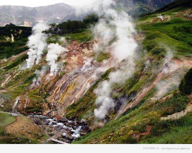 гейзерное поле на Камчатке
