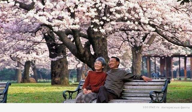 японская пара