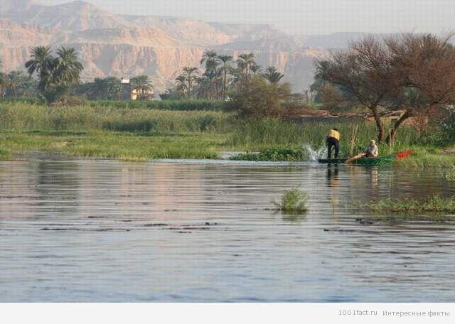 Нил_река_Египет