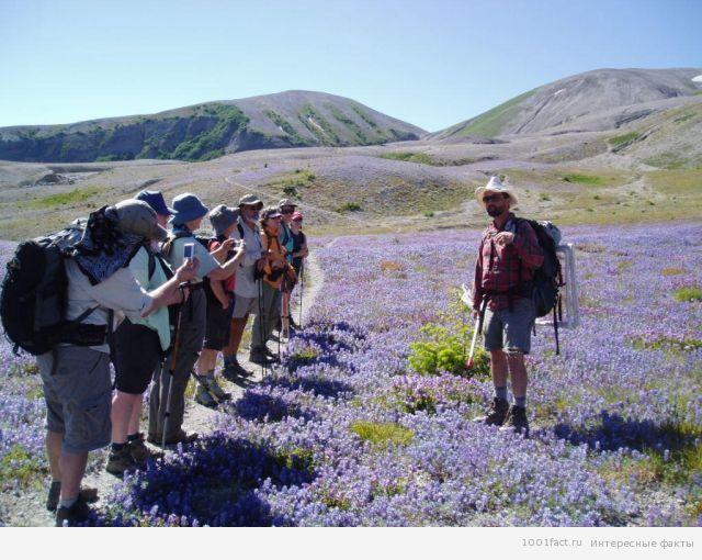 туристический поход_подготовка