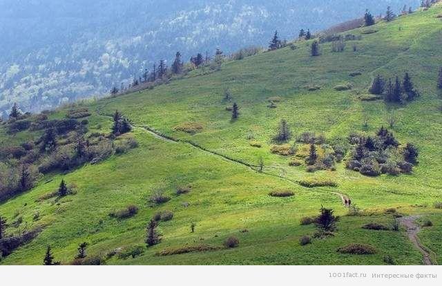 Аппалачская тропа в США