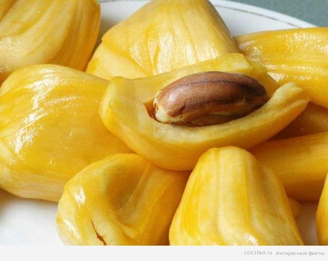 вкусный фрукт_джекфрут