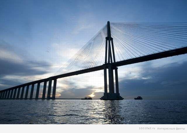 мост через приток Амазонки