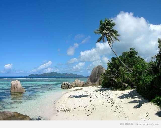 климат Фиджи