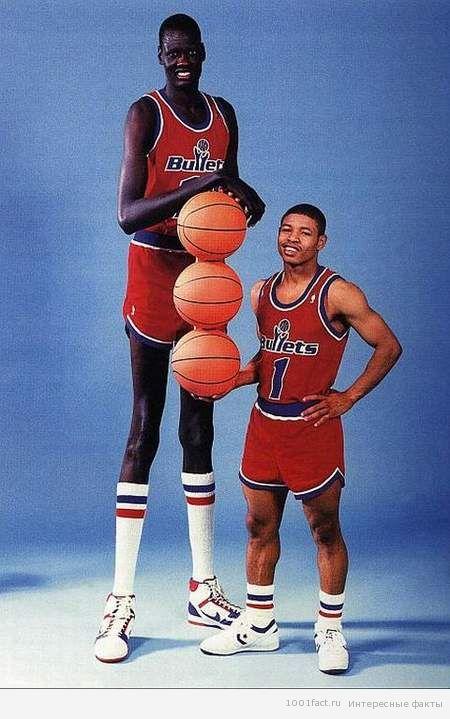 рост баскетболиста