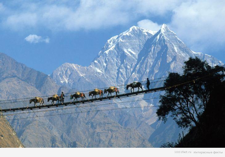 страна Непал