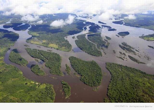 вид на реку Амазонка