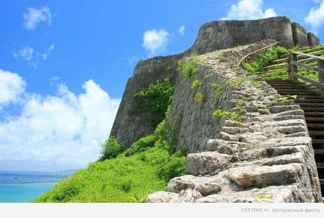 природа острова Окинава