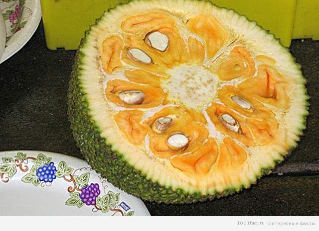 половина джекфрута