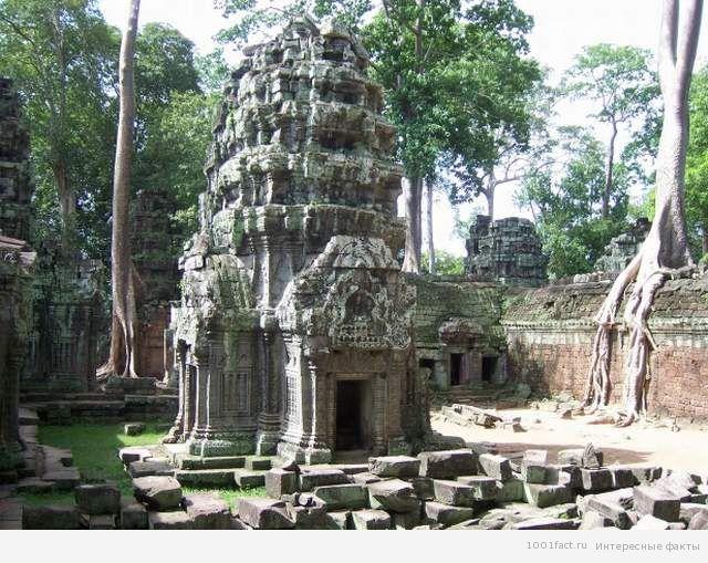 Камбоджа_Та Прум