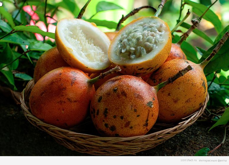 свойства фрукта маракуйя
