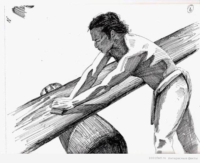 первые доски для серфинга