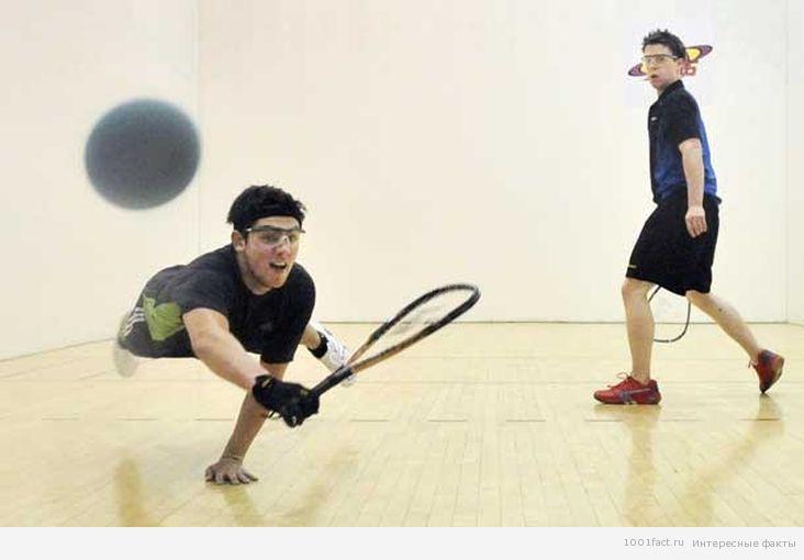 ракетбол