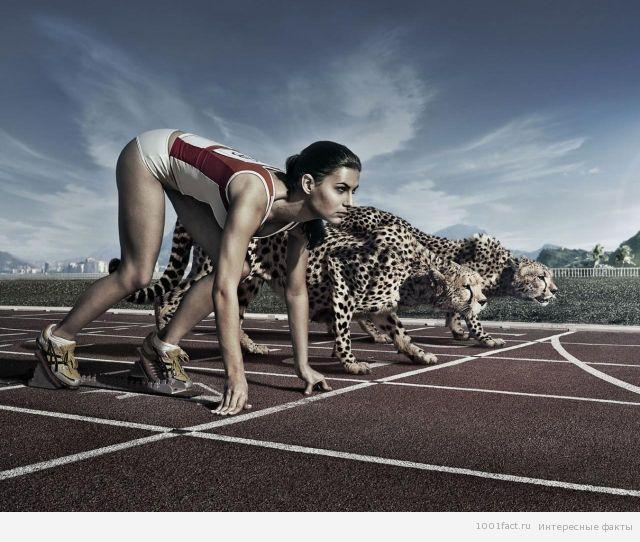 спорт_легкая атлетика