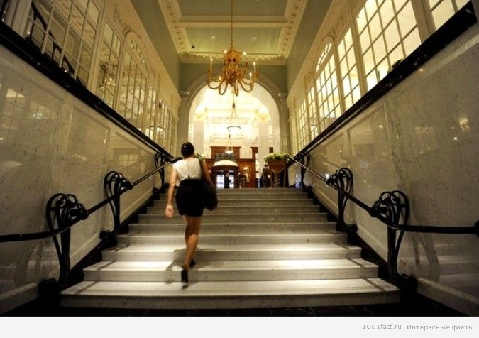 этикет на лестнице