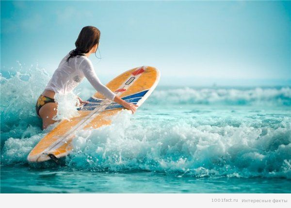 качество досок для серфинга