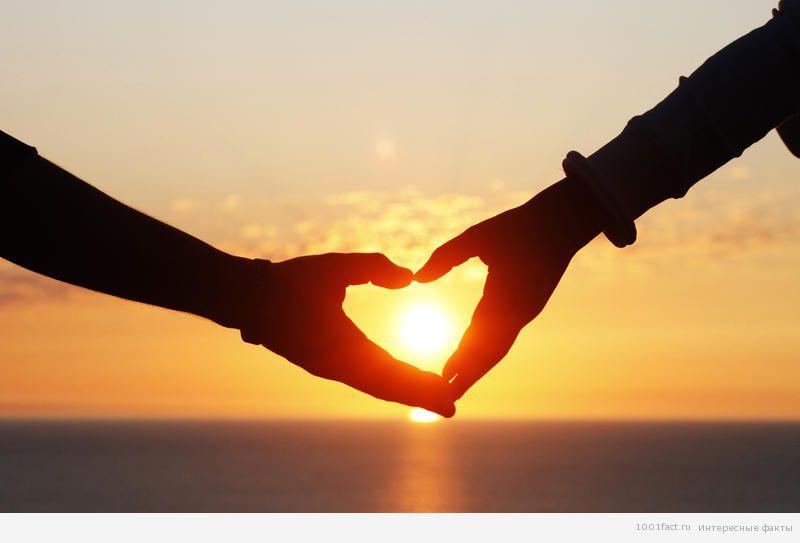 дружественная любовь